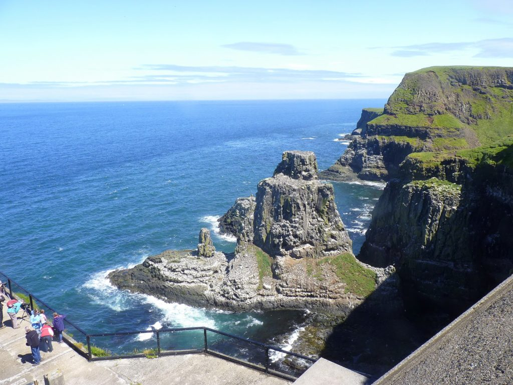 BLOG - Go and see the puffins at Rathlin Island