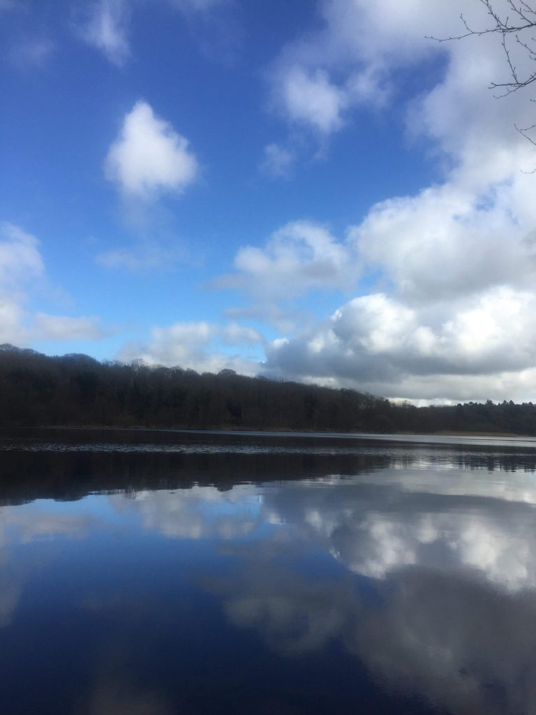 ELY LODGE FOREST - Lough Navar LIEI_006