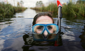 Bog Snorkelling in Peatlands Bog