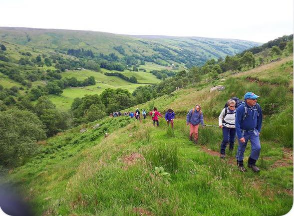 Nine Glens Walking Tours leading visitors through the glens - a Live It Experience It member