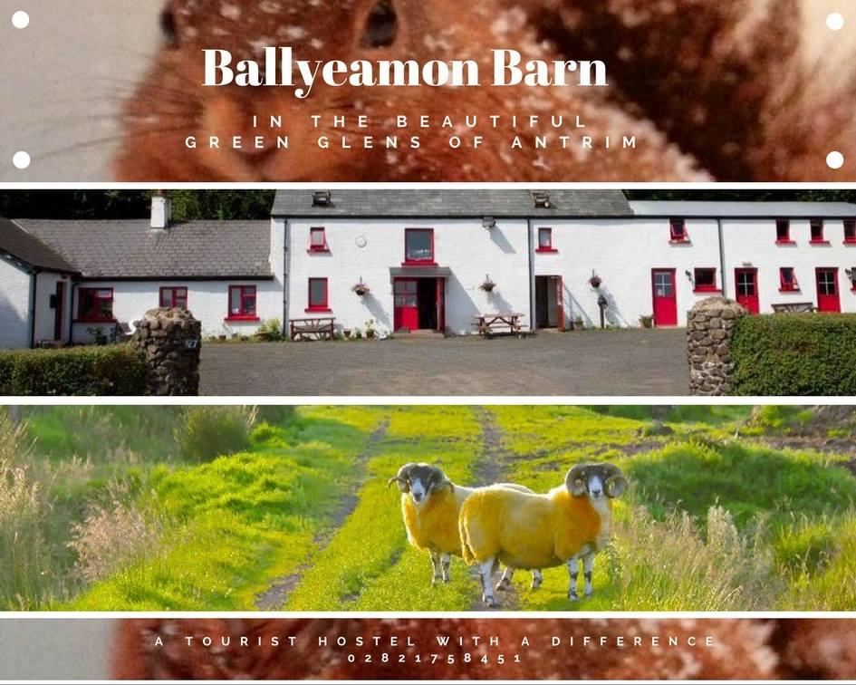 Ballyeamon Barn image
