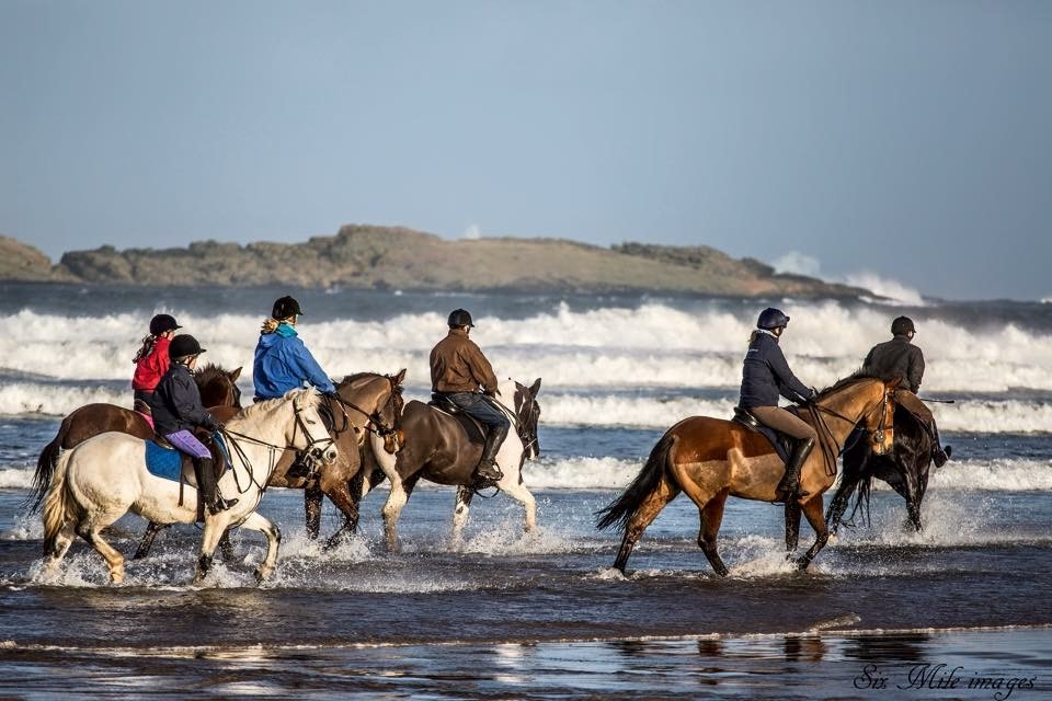 Horses on beach - things to do Northern Ireland